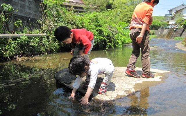 ちょろちょろと小川で遊ぶ子ども