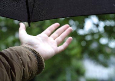 じとりと降る雨