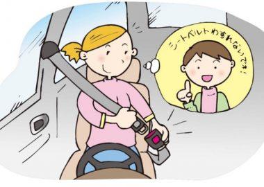 かっちゃんとシートベルトを締める