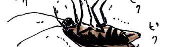 ぴくぴくと瀕死な虫