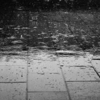 びちょりびちょりと雨が降る
