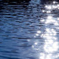 きらっと水面が光る