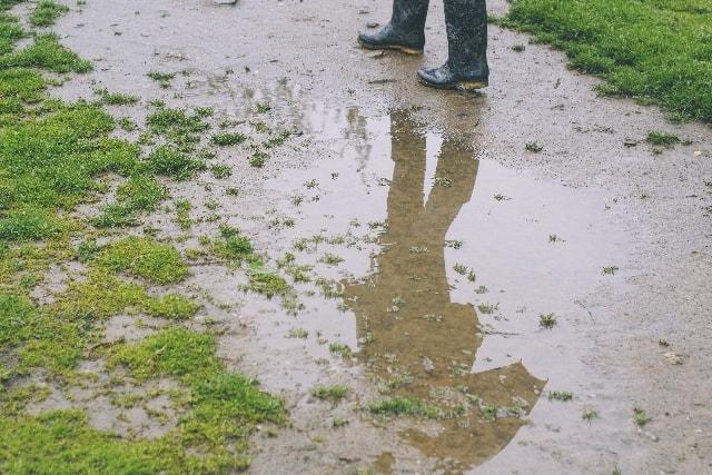 雨でぐちょぐちょになった道