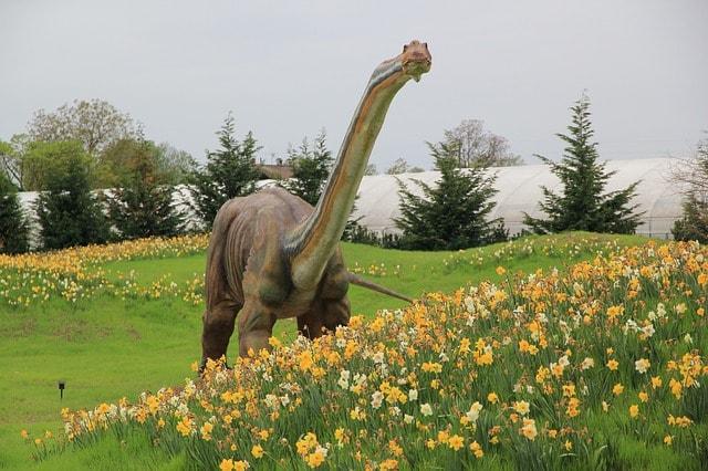 どっしりとした恐竜