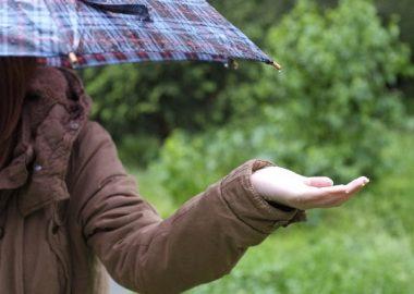 じとじとと雨が降る
